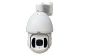 | Camera AHD SPEEDOME hồng ngoại eView SD5A13