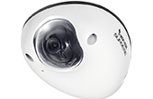 Camera IP Vivotek | Camera IP Dome 1.2 Megapixel Vivotek MD8531H