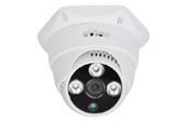 Camera IP eView | Camera IP Dome hồng ngoại eView IRD2803N20F