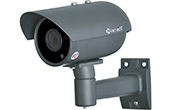| Camera HD-TVI 1.3 Megapixel VANTECH VP-401ST