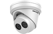 Camera IP HIKVISION | Camera IP Dome hồng ngoại 2.0 Megapixel HIKVISION DS-2CD2325FHWD-I