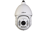 | Camera IP Speed Dome hồng ngoại DAHUA SD6C131U-HNI