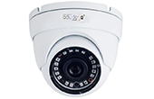 Camera IP GOLDEYE | Camera IP Dome hồng ngoại 2.0 Megapixel Goldeye GE-NSD414-IR