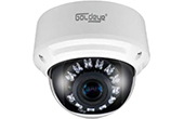Camera IP GOLDEYE | Camera IP Dome hồng ngoại 4.0 Megapixel Goldeye GE-NFD741-IR
