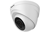Camera QUESTEK | Camera Dome 4 in 1 hồng ngoại 1.3 Megapixel QUESTEK Win-6112C4
