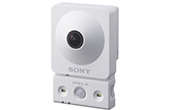 Camera IP SONY | Camera IP SONY SNC-CX600