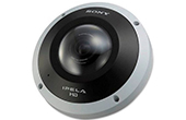 Camera IP SONY | Camera IP Dome SONY SNC-HM662
