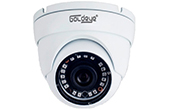 Camera IP GOLDEYE | Camera IP Dome hồng ngoại 4.0 Megapixel Goldeye NSD574-IR
