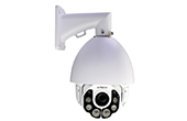Camera IP AVTECH | Camera IP Speed Dome hồng ngoại 5.0 Megapixel AVTECH AVM5937