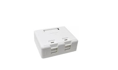 2-Port Surface Mount Box LS-SMB-2PORT