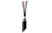 Cáp mạng AMP | Outdoor All-Dielectric Fiber Optic Cables 12F 50/ 125µm COMMSCOPE/AMP (Y-1427452-2)